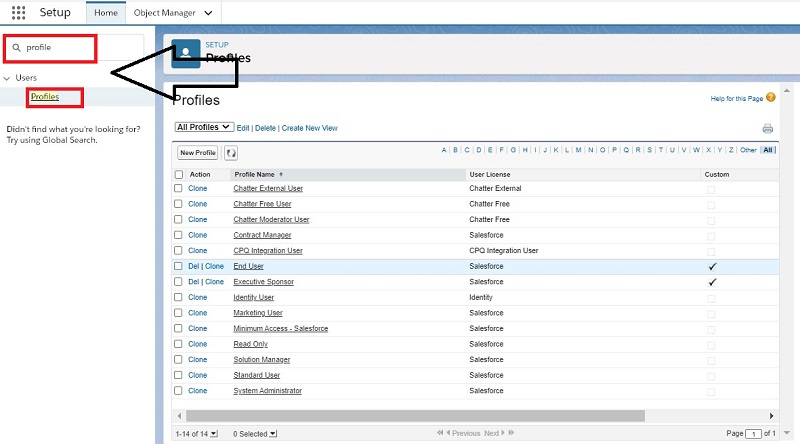 View and Manage Profile in Salesforce