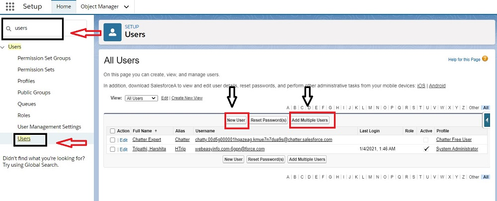 add single or multiple new users in Salesforce
