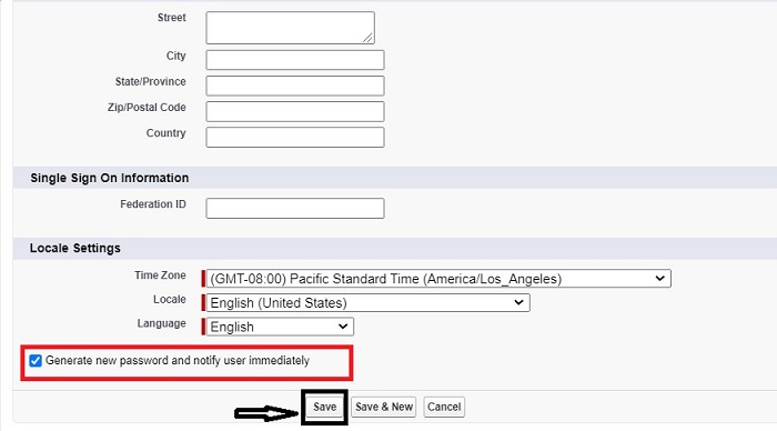 user setup in Salesforce