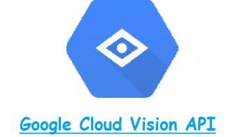 Google Cloud Vision API or AutoML Vision